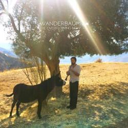 WANDERBAUM ALBUM MP3